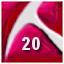 rw20_icon